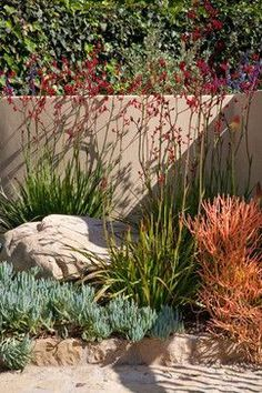 San Roque Get-a-Way - contemporary - Landscape - Santa Barbara - Margie Grace - Grace Design Associates