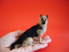 Lucy Maloney's Miniature Dogs Are Stunningly Lifelike | Dogster