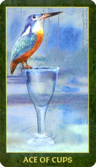 184 Best Ace of Cups ¸ •´*¨`*•✿ images in 2018 | Tarot