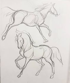 Hottest Photographs dog drawing tutorial Concepts Wish to learn how to draw? - Hottest Photographs dog drawing tutorial Concepts Wish to learn how to draw? Horse Drawings, Art Drawings Sketches, Animal Drawings, Drawing Art, Drawing Animals, Drawings Of Dogs, Drawing Hands, Drawing Designs, Pony Drawing