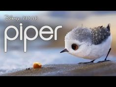 Piper is a 2016 computer-animated short film produced by Pixar Animation Studios. Written and directed by Alan Barillaro, it was theatrically released alongs.