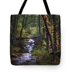 """Fall in the Forest  Tote Bag 18"""" x 18"""" by Saija  Lehtonen"""