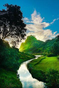 Karekare, Auckland, New Zealand Mountain Photography, Landscape Photography, Spring Photography, New Zealand Beach, New Zealand Travel, Kiwiana, Go Green, Auckland, Natural Beauty