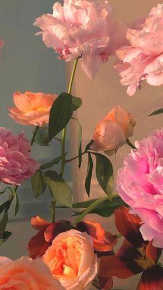 Ps Wallpaper, Flower Phone Wallpaper, Pink Wallpaper Iphone, Cute Patterns Wallpaper, Iphone Background Wallpaper, Aesthetic Pastel Wallpaper, Scenery Wallpaper, Aesthetic Wallpapers, Nature Aesthetic