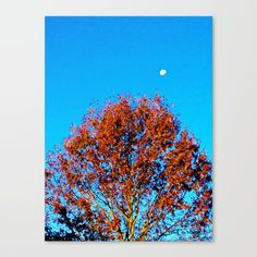 "Fall Moon Blue by LisaCarlene Designs for sale @Society6. Fine art print on bright white, fine poly-cotton blend, matte canvas using latest generation Epson archival inks. Individually trimmed and hand stretched museum wrap over 1-1/2"" deep wood stretcher bars. Includes wall hanging hardware."