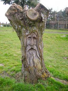 New Tree Sculpture Green Man Ideas – Schnitzerei Tree Carving, Wood Carving Art, Wood Sculpture, Sculptures, Sculpture Ideas, Tree People, Tree Faces, Wood Carving Patterns, Unique Trees