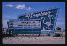 Flamingo Drive-In Theater sign, Dal Passo Road, Hobbs, New Mexico (LOC)