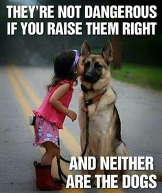 Love, so true! It is never just the dogs fault, nor the childs. Parents/owners have the biggest influence and are responsible for everything.