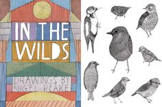 In the wilds with nigel peake - charming illustrations