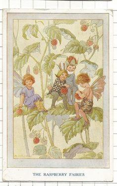 Margaret W. Tarrant (1888 – 1959, English) vintage postcard - The Raspberry Fairies postcard cf 1929