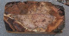 Raw chunk of burl wood called Black Cherry.  This will become a ring box ~  View 1
