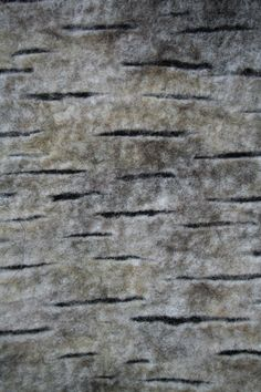 birch-detail-2010  Katrien Perquy-www.ailim.be