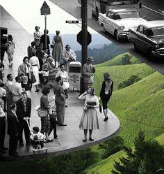 Vintage fotografie gecombineerd met natuur