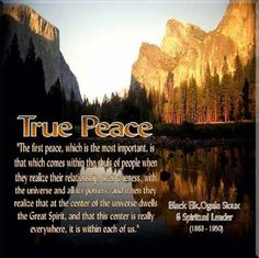True Peace and Beauty Native American Prayers, Native American Ancestry, Native American Wisdom, Indian Spirituality, Native American Spirituality, One Peace, World Peace, American Indian Quotes, Native Quotes