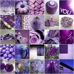 Lots of purple things