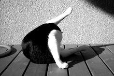 stretch?