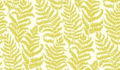 Wild Fern (W0049/02) - Clarke & Clarke Wallpapers - An all over Fern leaf trail motif with a hand painted effect. Showing in a citrus on a white background - more colours are available. Please request a sample for true colour match. Paste-the-wall product.
