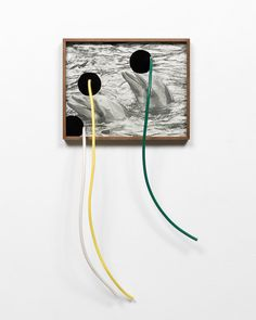 Elad Lassry, Untitled (Dolphins, Two), 2014 Robert Rauschenberg, Still Life Photography, Filmmaking, Mixed Media, Gallery, Dolphins, Artist, Mood, Image