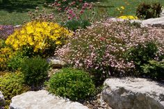 Browse ideas of how to landscape with rocks using these photos. Stone can be used in a variety of ways in your yard, no matter your landscaping style.