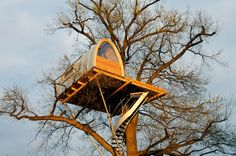 around the #oak #5 | design: #baumraum