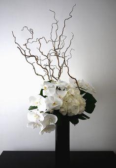 orchidée, hortensia,