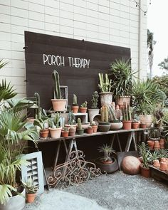corina (@corinaesquivel) • Instagram photos and videos Succulents, Place Cards, Place Card Holders, Lettering, Photo And Video, Videos, Photos, Instagram, Pictures