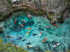 Three Sisters Springs, Florida by Paul Nicklen via National Geographic
