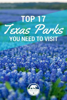Top 17 Texas Parks You Need To Visit Bucket List #5, 6, 10, 11, 12, & 14 ~ Checked