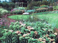 http://www.georgiaencyclopedia.org/articles/arts-culture/xeriscape-gardening
