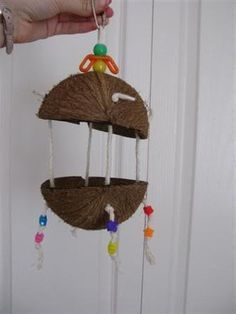 homemade bird toys   post 1 here s some coconut toys i made the birds thought some people ...