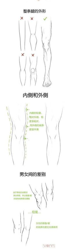 Drawing Human Anatomy legs male female muscles comparsion tutorial how not to 드림팩토리 그림공부봇 on - Learn six ways to get the most out of social media sites. From what to share, where to share and at what time to share your content. Drawing Legs, Body Drawing, Anatomy Drawing, Anatomy Art, Human Anatomy, Figure Drawing, Leg Anatomy, Drawing Style, Drawing Tips