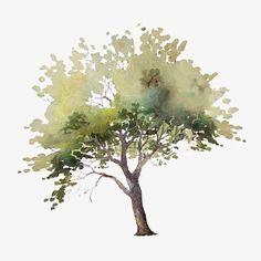 Textur-png-Aquarell-Element-Pflanzen – – Best Garden Plants And Planting Landscape Sketch, Landscape Drawings, Architecture Drawings, Landscape Architecture, Landscape Design, Art Drawings, Landscape Bricks, Architecture Design, Watercolor Trees