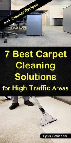 Pasadena Professional Carpet Cleaning Lets See Carpet