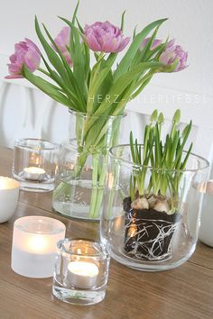 Blumen ohne Topf in Glasvase