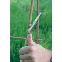 Le 'Trombone' du jardinier