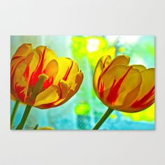 Inside And Out Stretched Canvas by Marisa Lopez-Cruzan - $85.00