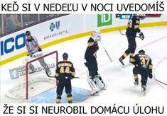 Hockey Memes, Basketball Court, Sports, Hs Sports, Sport