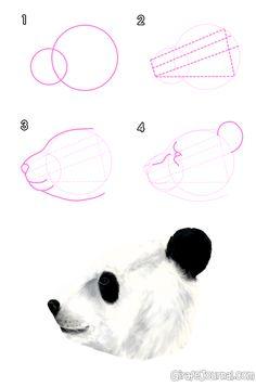 Как нарисовать медведя поэтапно?