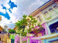 """""""カラフルで可愛い""""は正義だ!シンガポールのフォトジェスポット8選 Singapore, Fair Grounds, Landscape, Travel, Scenery, Viajes, Destinations, Traveling, Trips"""