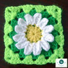 crochet daisy granny