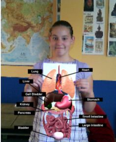 Este blog escolar muestra una #herramienta interesante de #realidadaumentada para el #aula