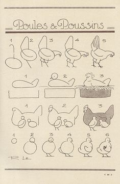 more chicken drawing Drawing Lessons, Drawing Techniques, Art Lessons, Bird Drawings, Animal Drawings, Easy Drawings, Drawing Sketches, Sketching, Chicken Drawing