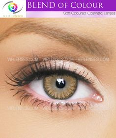 Honey Blend of Color contact lenses give a warm glow of color to your eyes, they work on all eye colors even dark eyes. http://www.viplenses.com/collections/blend-of-color/products/blends-honey-contact-lenses