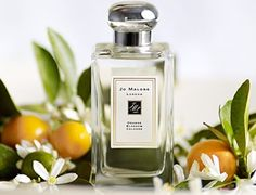 Orange-blossom perfume by Jo Malone.   I tried a sample vial of this a while back and I became addicted. After I ran out I was so upset. I have been dreaming of smelling this scent again since then. This is probably the only perfume I have ever truly loved....or even liked.