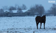 Here's how to keep the barn running smoothly through the worst winter weather.