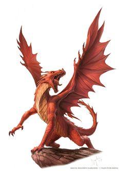 Dragon Rpg, Red Dragon, Mythical Creatures Art, Fantasy Creatures, Chromatic Dragon, Dragon Family, Dragon Artwork, Dragon Pictures, Monster Art