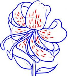 how to draw a tiger lily step 6