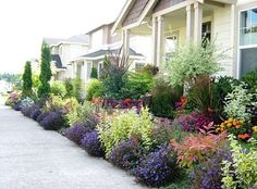 Rowhouse with beautiful landscaping