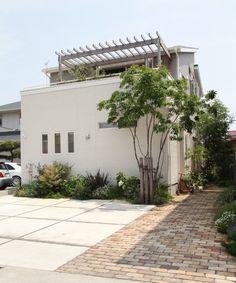 アプローチ / 駐車スペース / 植栽 / パーゴラ / 門まわり Total Garden Design Zen House, Timber House, House Landscape, Backyard Retreat, Natural Garden, House Entrance, Front Yard Landscaping, House Front, Garden Inspiration