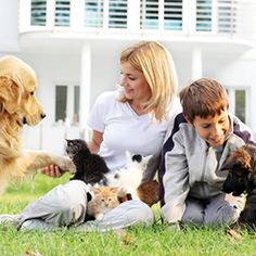 How to give your pet top-of-the-line yet affordable pet care at home.